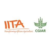 IITA Recruitment 2021 (3 Positions)| IITA Careers – http://jobs.iita.org/eRecruit/RecApplication
