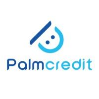 Palmcredit NG | LinkedIn