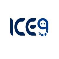Ice Nine LTD   LinkedIn