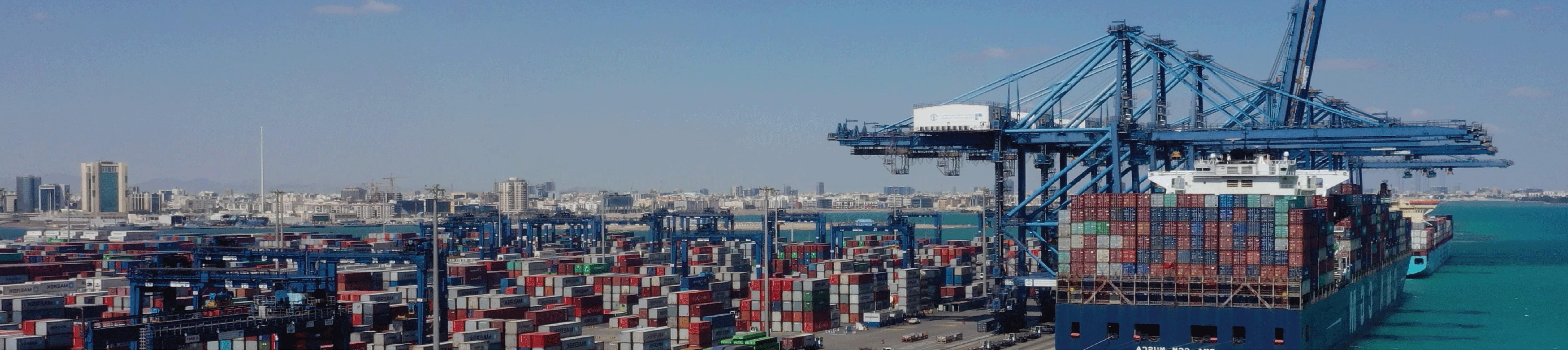 Red Sea Gateway Terminal Linkedin