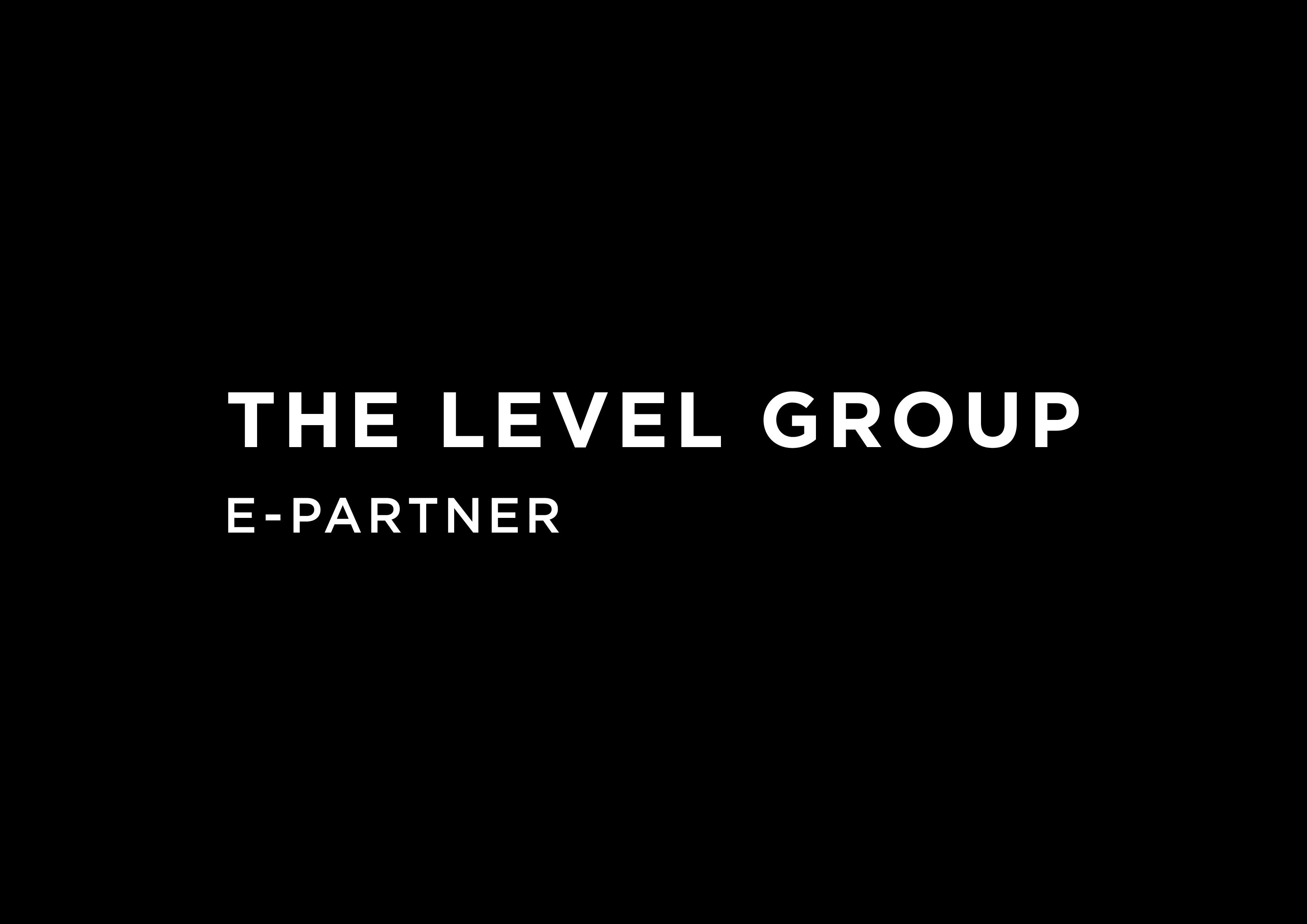 The Level Group Linkedin