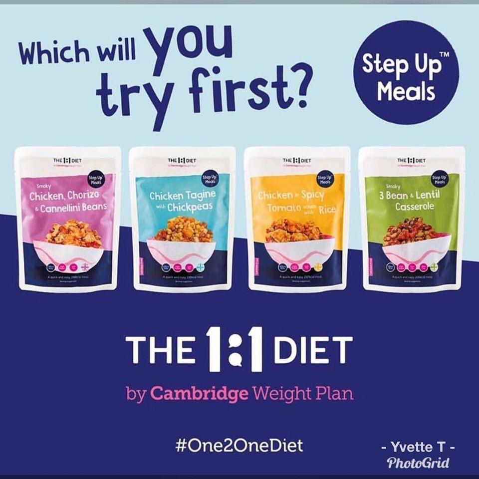 1 1 diet by cambridge weight plan