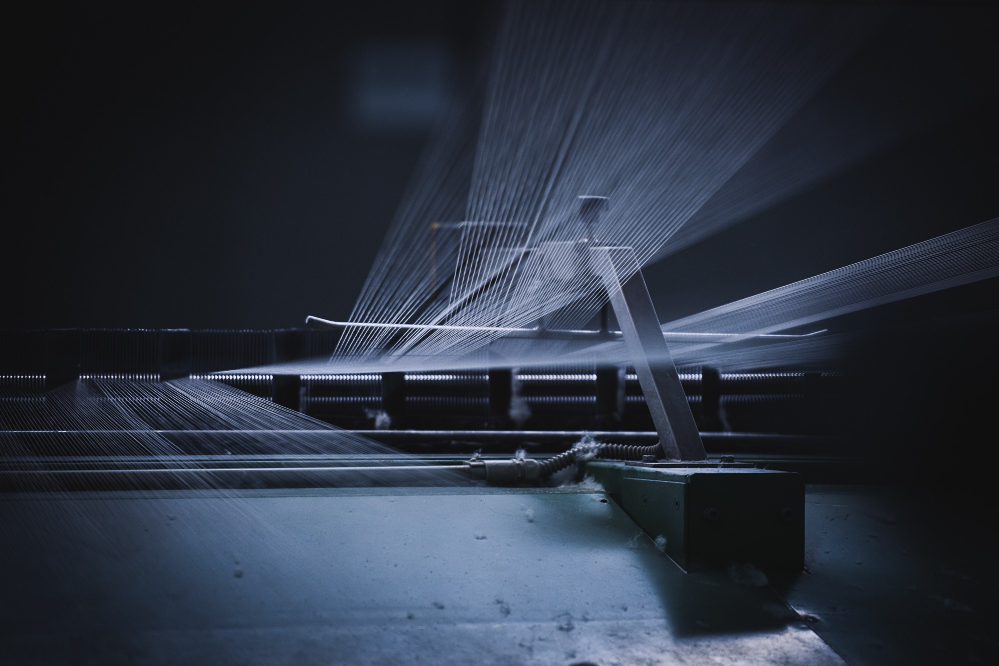 Galletti Bentivoglio Lavora Con Noi berto e. g. industria tessile | linkedin