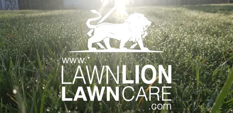 Lawn Lion Llc Linkedin