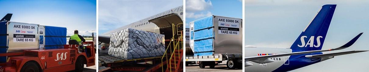 Sas Cargo Group Linkedin