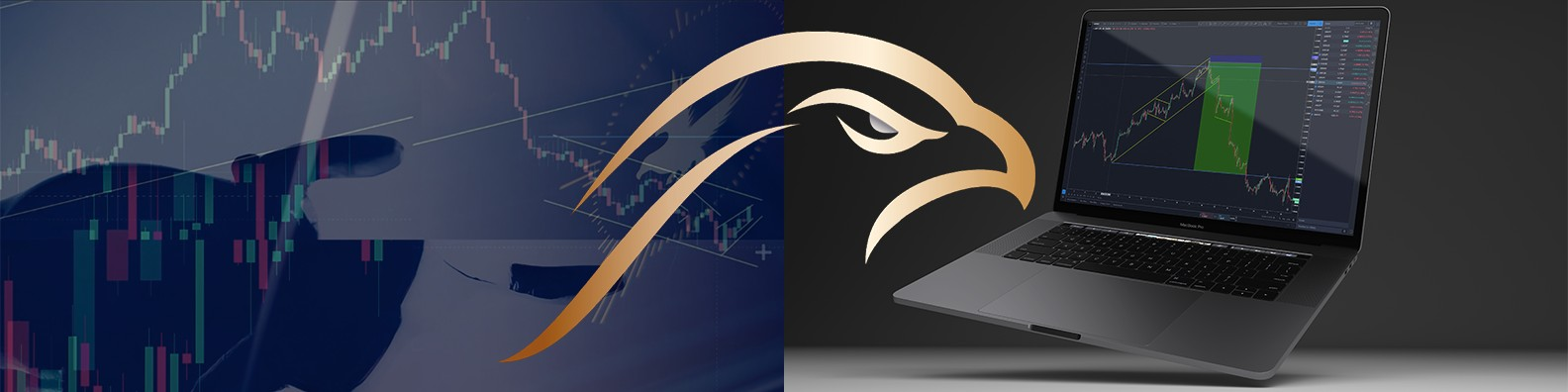 falcon trading systems ltd