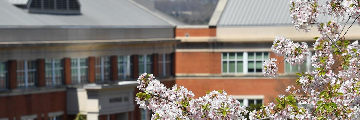 Uncc Spring 2022 Calendar.Unc Charlotte Center For Graduate Life Linkedin