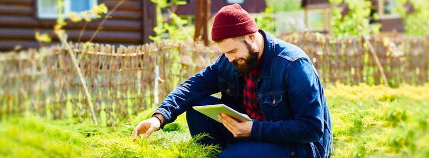Garden Design Academy Of Ireland Mission Statement Employees And Hiring Linkedin
