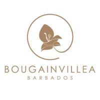 Bougainvillea Barbados Linkedin