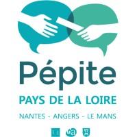 Pépite des Pays de la Loire   LinkedIn