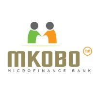 Engineering Team Lead at Mkobo Microfinance Bank