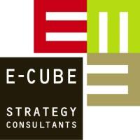 Precipizio Competitivo batteri  E-CUBE Strategy Consultants | LinkedIn