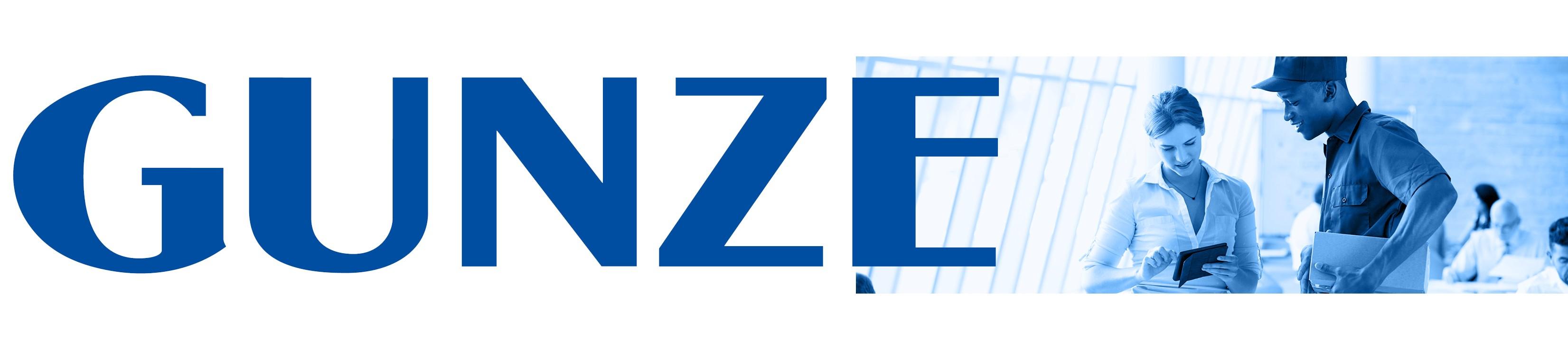 Gunze Electronics USA logo