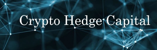 how to create a cryptocurrency hedge fund