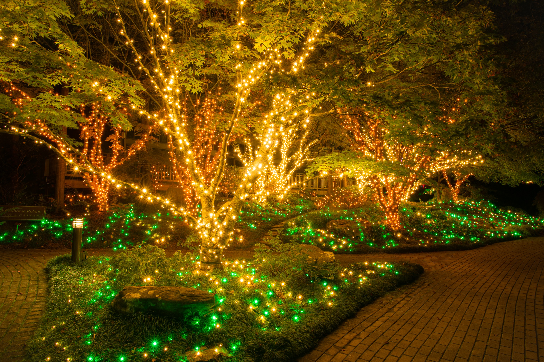 Lewis Ginter Botanical Garden Richmond Va Linkedin