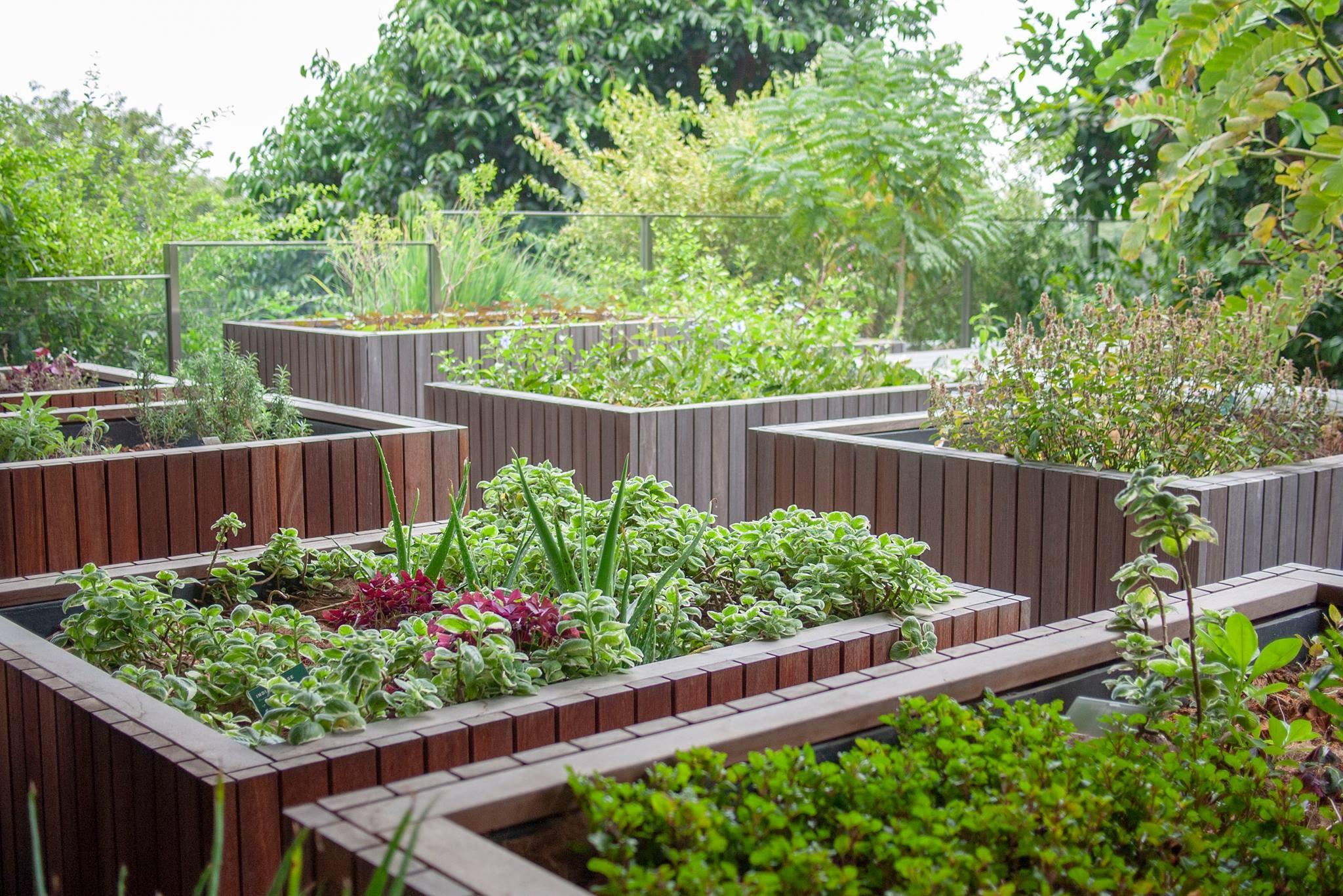 Edible Garden City Linkedin