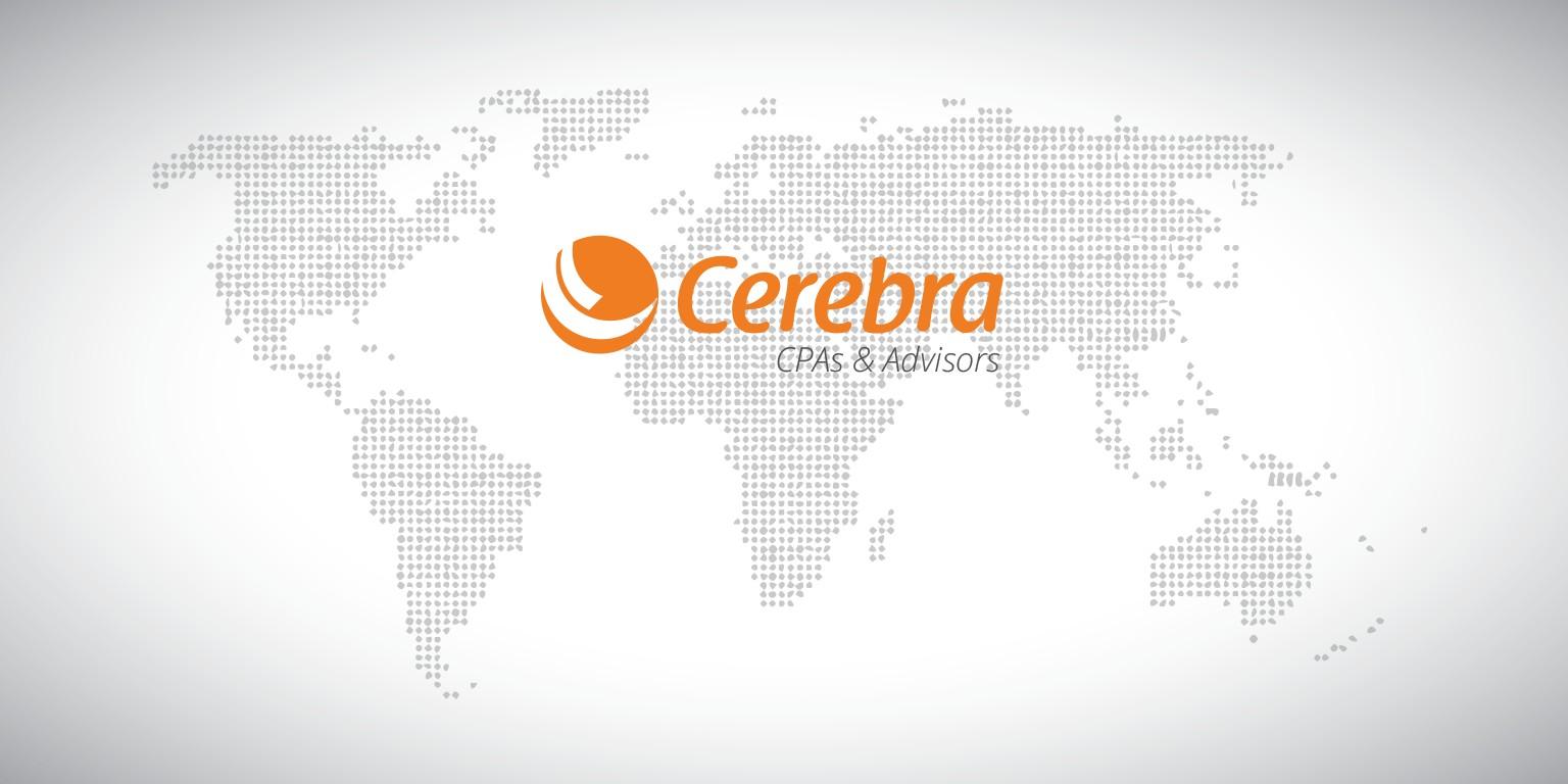 cerebra investment consulting firm