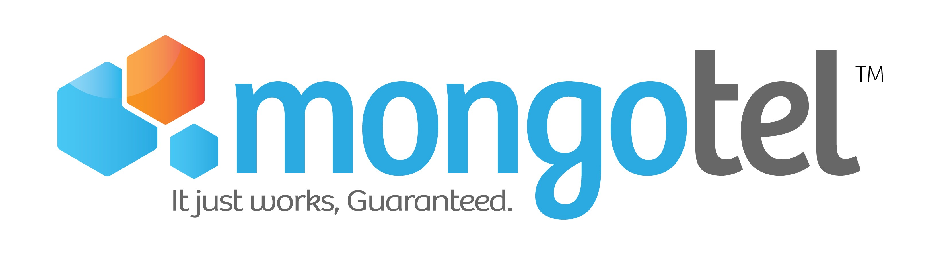 Image result for mongotel logo