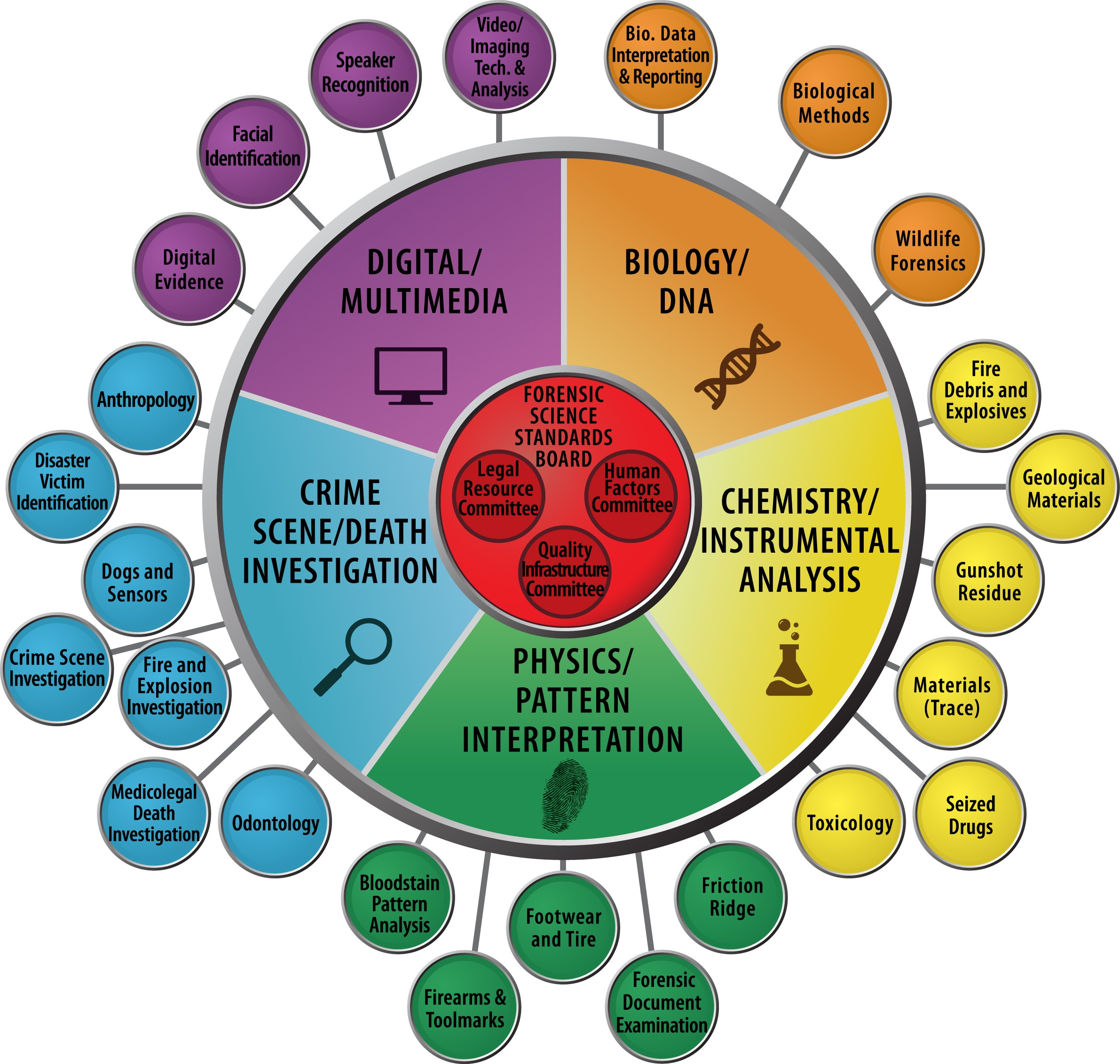 Organization Of Scientific Area Committees For Forensic Science Linkedin