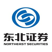 Northeast Securities logo