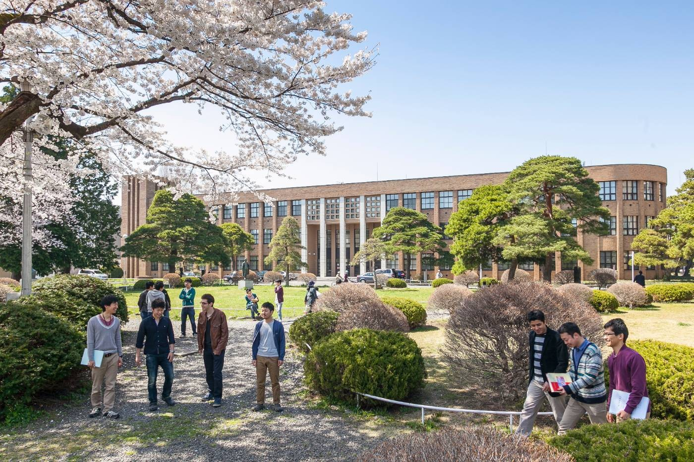 Program Student Exchange Tohoku University