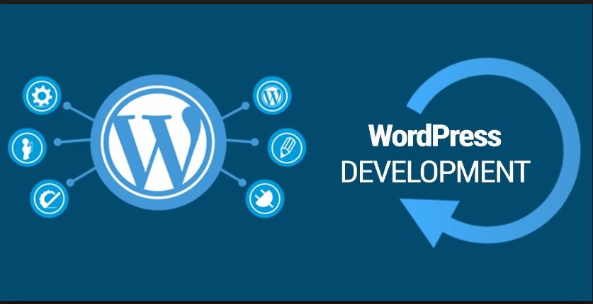 Remote Freelancer WordPress Developer | LinkedIn