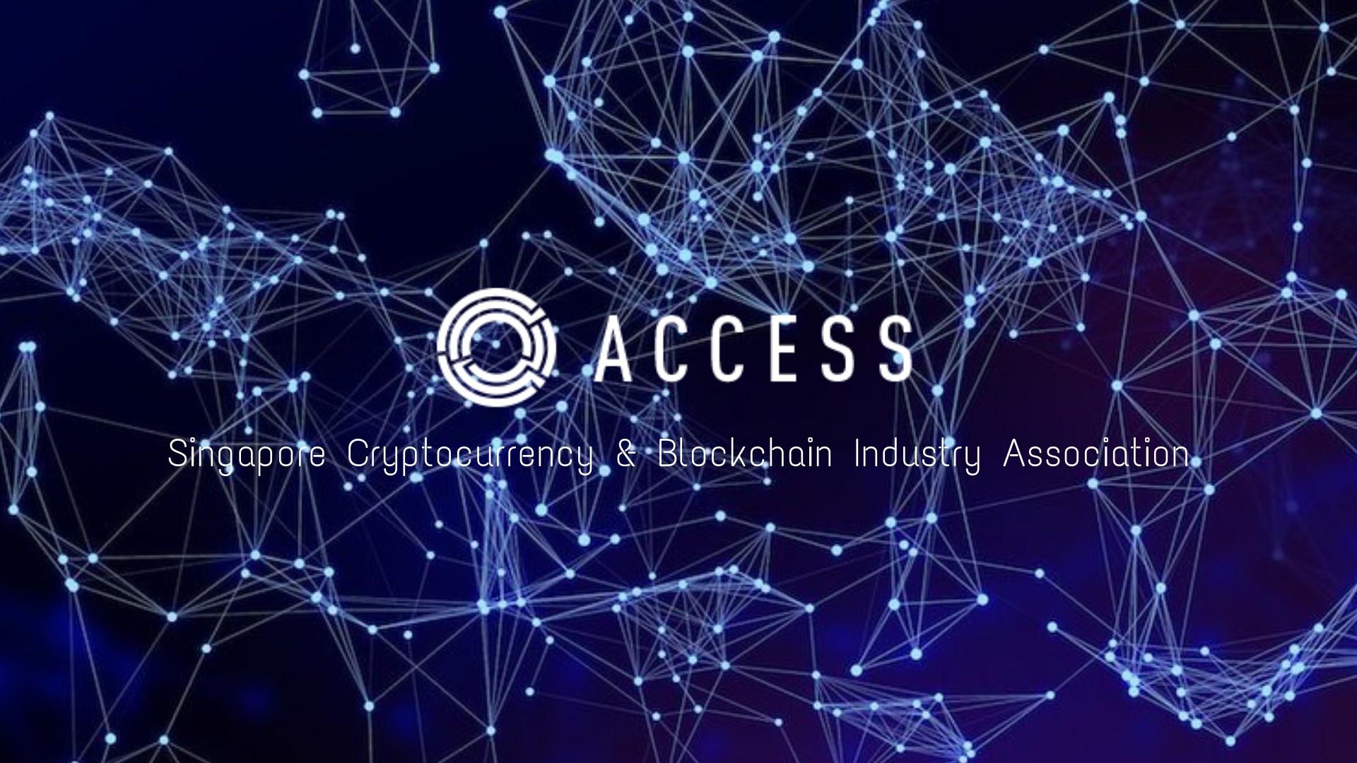 how to access bitcoin blockchain