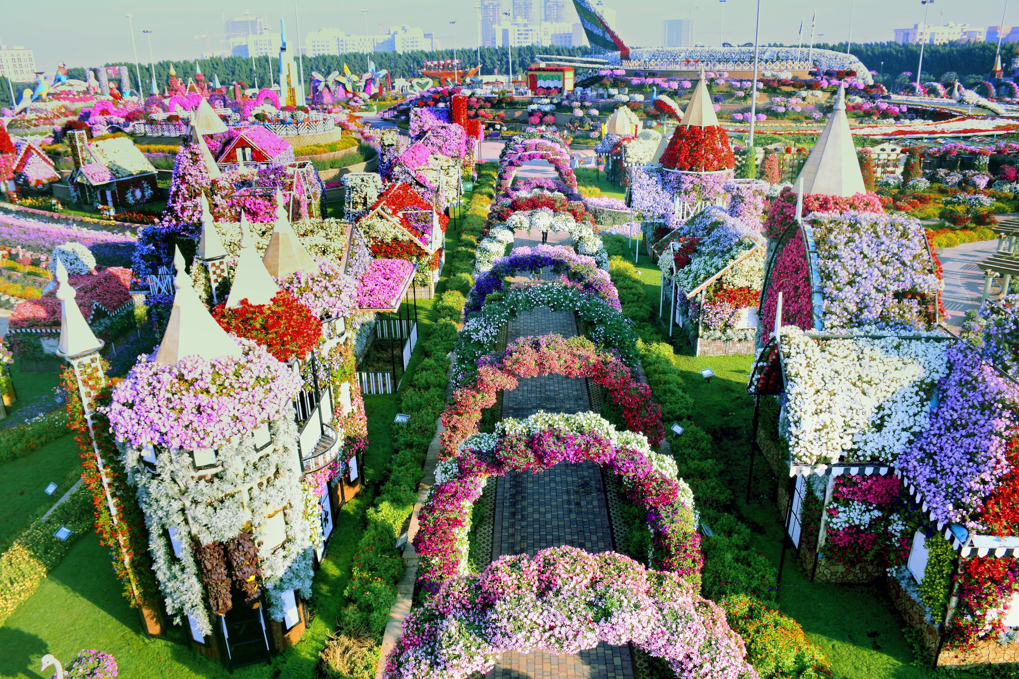 Дубай miracle garden канада стоимость жилья