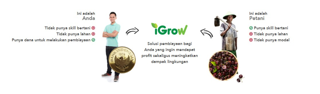 Igrow Resources Indonesia Linkedin