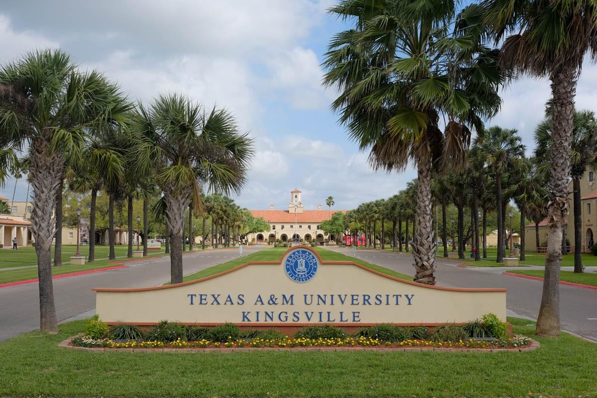 Texas A M University >> Texas A M University Kingsville Linkedin