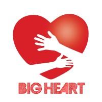 Big Heart NGO | LinkedIn