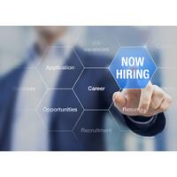 Automotive Career Professionals Linkedin