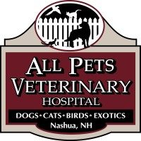 All Pets Veterinary Hospital Llc Linkedin