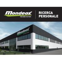MONDEOX SPA THE SHOE FACTORY   LinkedIn
