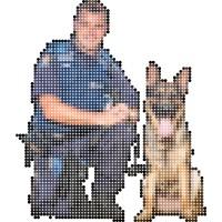 based policing