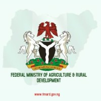Consultant at Federal Ministry of Agriculture and Rural Development