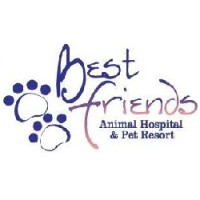 Celebrating Powerful Change And Collective Impact Animal Welfare Groups From Nine States Win Best Friends Lifesaving Awards Best Friends Animal Society
