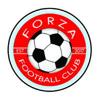 Forza Football Club Academy Linkedin