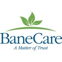 Bane Care Management logo