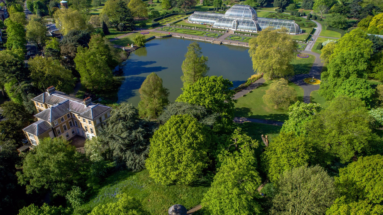 1519799150541?e=2159024400&v=beta&t=h0tHlllFbGj44YvofPyDmlXsY GBTx2 0LLzW4Tr1Zg - Kew Gardens Royal Botanic Gardens Kew Richmond Surrey Tw9 3ae
