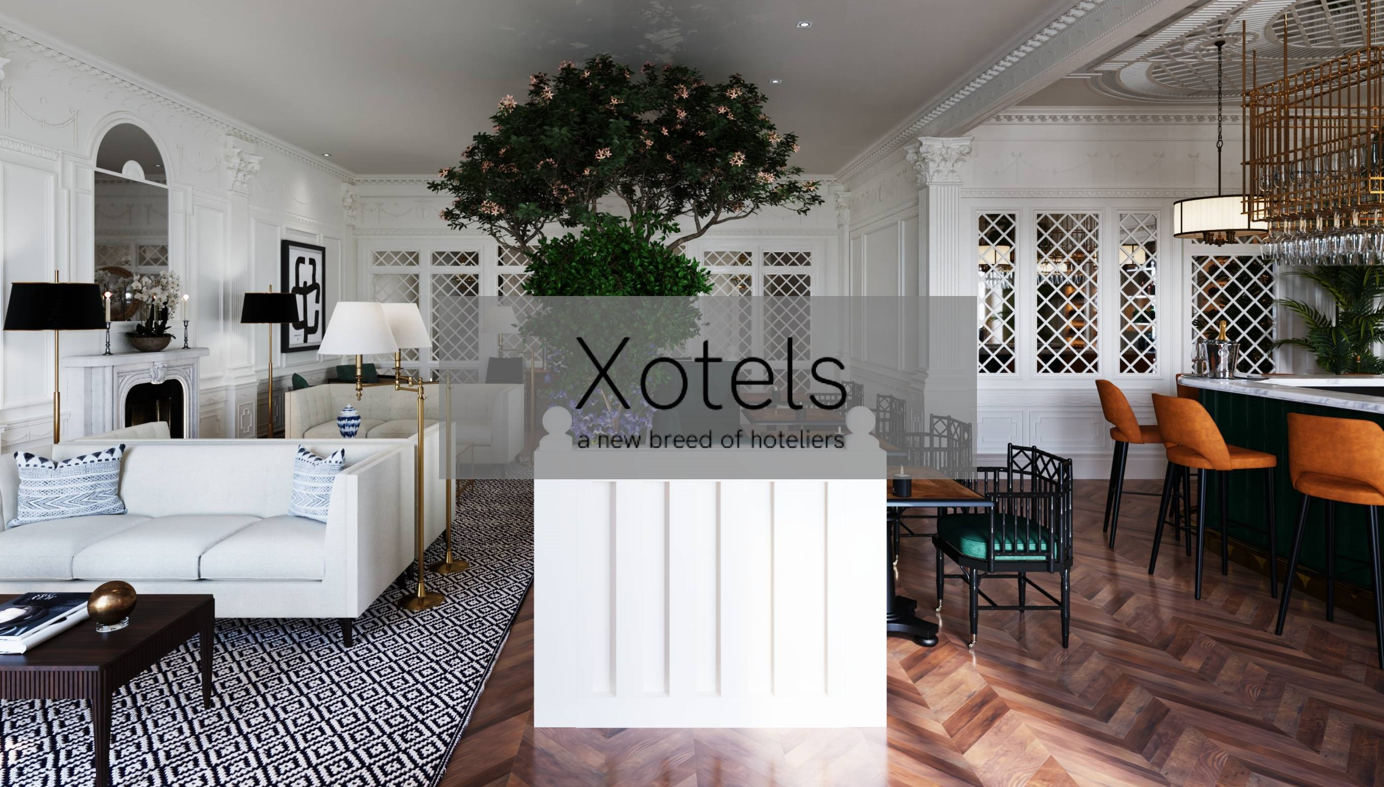 Xotels Hotel Management Company Linkedin