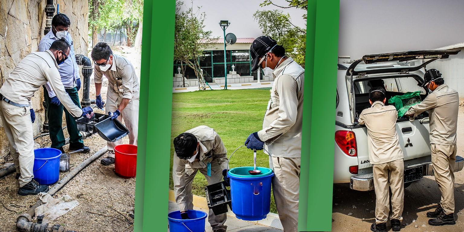 Qatar Pest Control Company Wll Linkedin