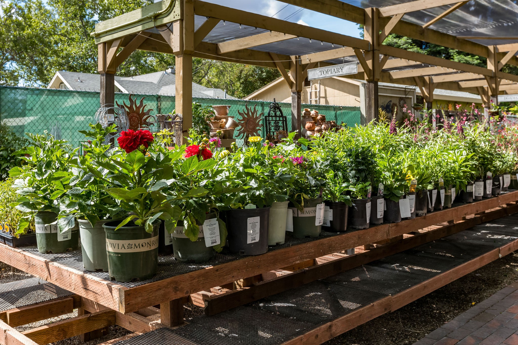 The Greenery Nursery And Garden