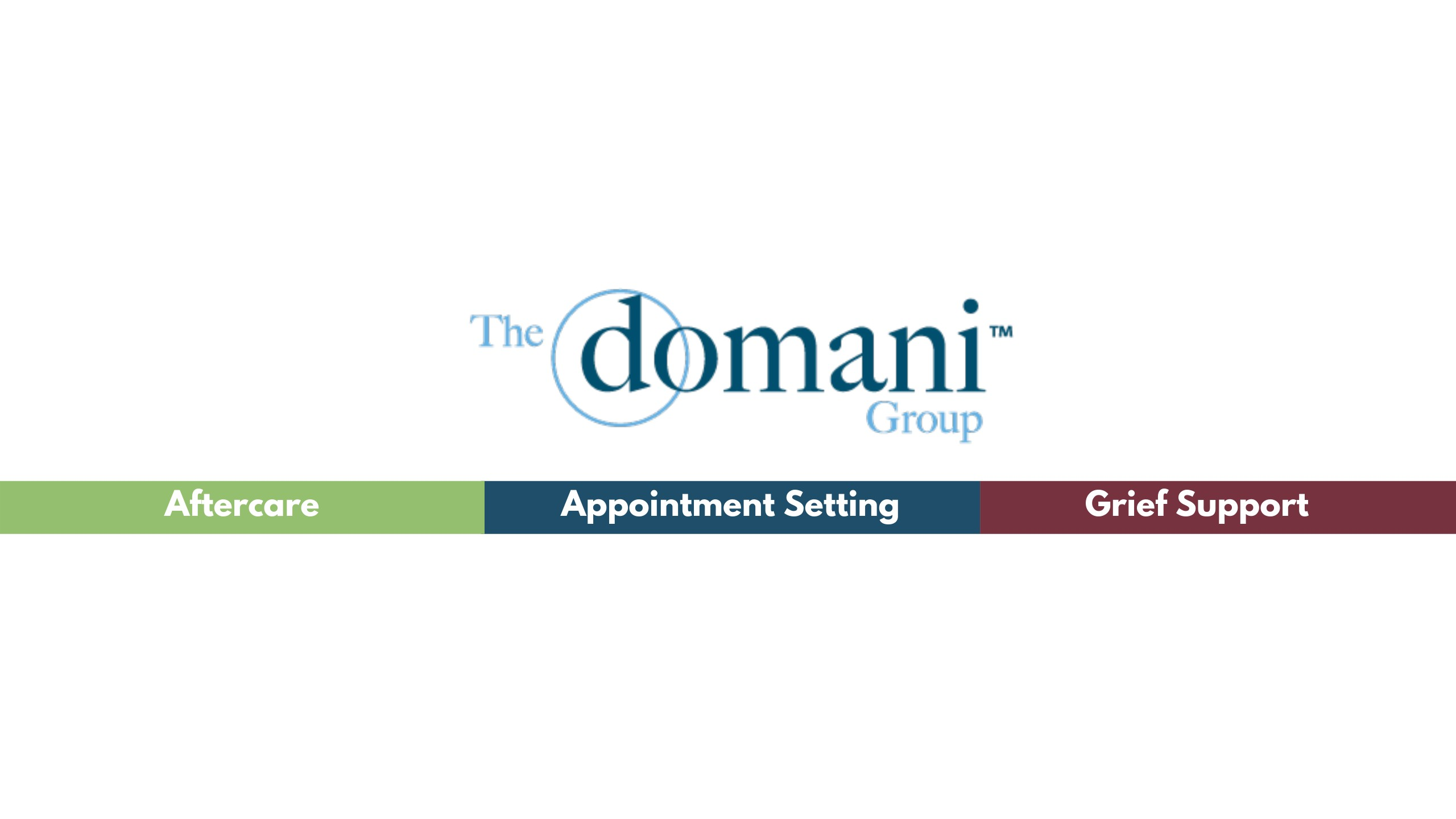 The Domani Group