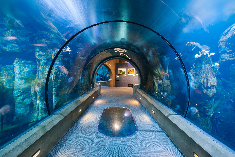 Oregon Coast Aquarium Linkedin