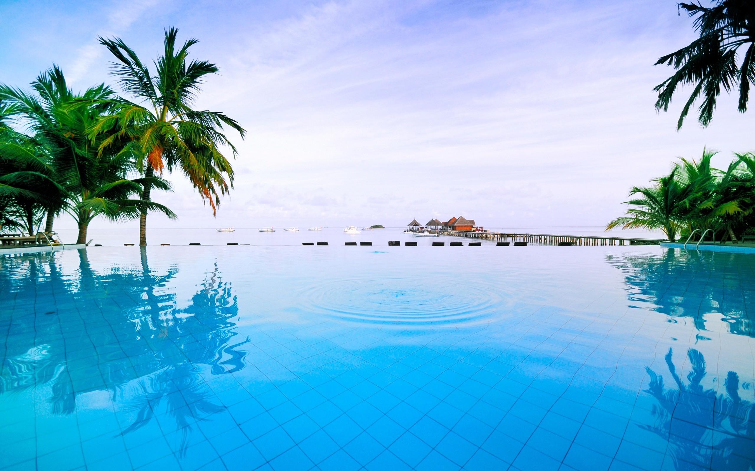 Bouhayrat Swimming Pool Construction And Maintenance Company Ltd Linkedin