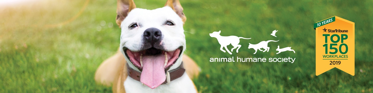 Animal Humane Society Linkedin